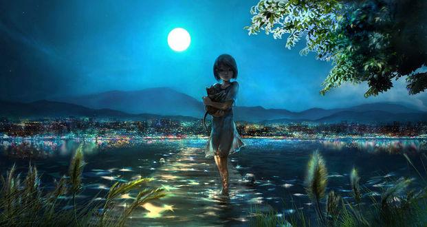 Обои Девушка с котенком на руках стоит в воде на фоне города вдалеке