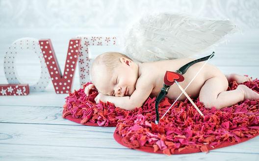 Обои Голый младенец в образе Купидона спит на ковре из лепестков цветов, рядом с ним лук и стрела с сердечком вместо наконечника, а на заднем плане виднеется надпись LOVE (ЛЮБОВЬ)