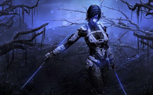 Обои Девушка в доспехах с двумя мечами