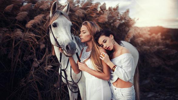 Обои Две девушки стоят возле лошади, фотограф Ivan Gorokhov
