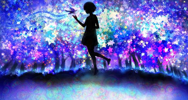 Обои Силуэт девушки с птицей над рукой на фоне звездных деревьев