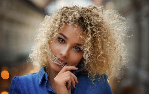 Обои Девушка - блондинка с кучерявыми волосами, фотограф DBond