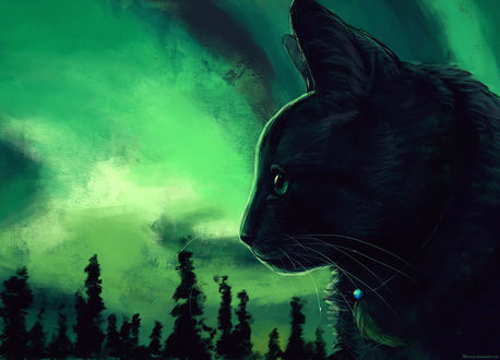 Обои Профиль кота на фоне облачного неба, by Meorow