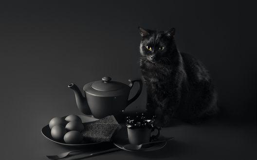 Обои Черный кот сидит на столе с завтраком, фотограф Sanket Khuntale