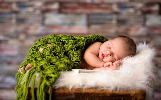 Обои Младенец спит под зеленым вязаным покрывалом