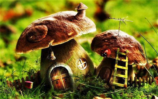 Обои Два гриба-домика с трубой и антенной на крыше