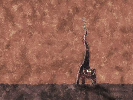 Обои Кот с торчащим хвостом, рядом рыбный скелет
