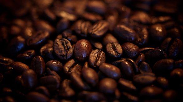 Обои Зерна кофе в макросъемке