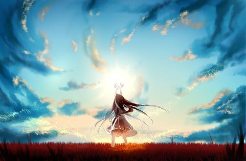 Обои Девушка стоит в поле на фоне неба, вытянув руки вверх, by Flaykie