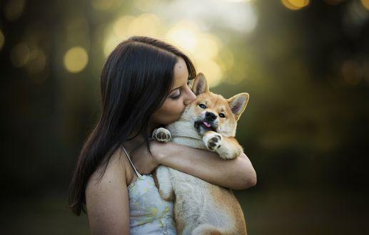Обои Девушка держит в руке щенка акиты-ину