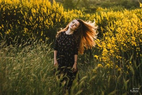 Обои Девушка Маша в цветущем поле, фотограф Ульяна Мизинова