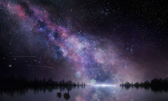 Обои Два лебедя в пруду на фоне ночного неба и млечного пути