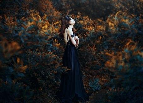 Обои Девушка с бабочками на ней, в темном платье, стоит среди природы, фотограф Ronny Garcia