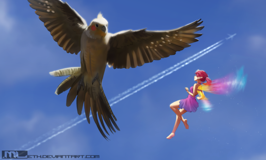 Обои Эльфийка с разноцветными крыльями с белым попугаем, by MLeth