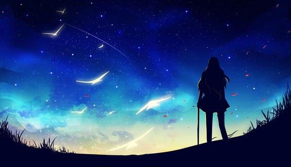 Обои Силуэт девушки с мечом стоит на фоне ночного неба и белых птиц, by Erisiar