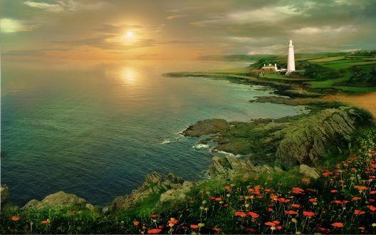 Обои Маки цветущие на берегу моря, на заднем плане маяк в лучах заходящего солнца