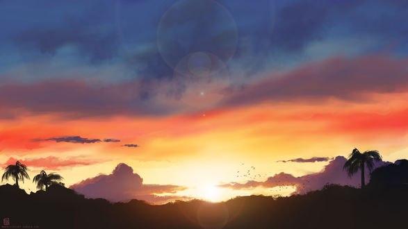 Обои Флорида на фоне заката, by Manatiini