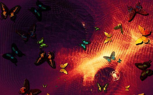 Обои Абстракция с рассыпанными бабочками на фоне цветовых разводов