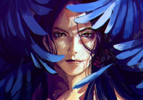 Обои Лицо парня с красными глазами среди синих перьев, аниме Jojo no Kimyon na Bouken / Невероятное приключение ДжоДжо, art by Meron Nouka