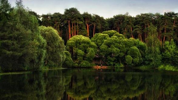 Обои Лето в московском парке с прудом, фотограф Роман Алябьев