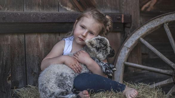 Обои Девочка Jagoda в обнимку с ягненком Jimmy сидит рядом с колесом в амбаре, фотограф Agnieszka Gulczynska