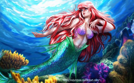 Обои Ариэль / Ariel из мультфильма Русалочка / The Little Mermaid, by IndyMBras