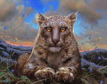 Обои Леопард с янтарными глазами, by 25kartinok