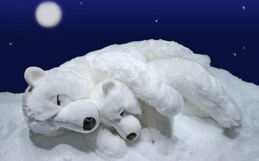 Обои Мягкие игрушки белая медведица с медвежонком, спят на снегу под пологом полярной ночи