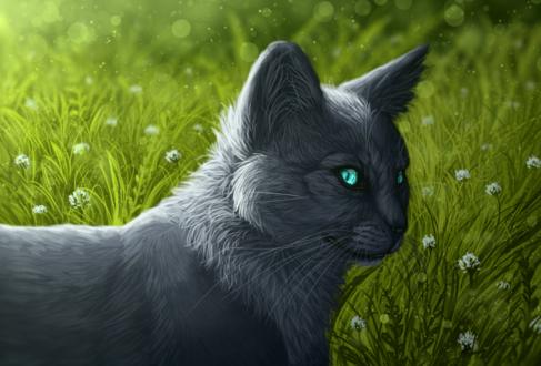 Обои Серый кот на фоне травы, by Taliy4h