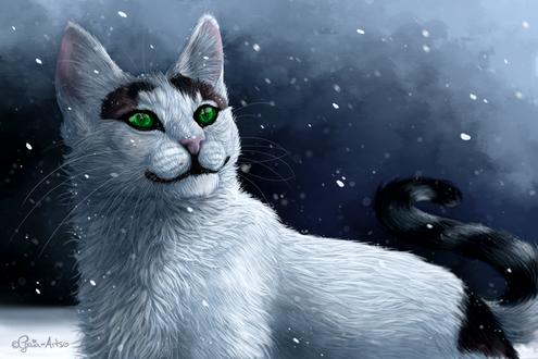 Обои Бело-черная кошка с зелеными глазами на фоне снега, by Taliy4h