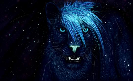 Обои Черная пантера с синей челкой, by Taliy4h