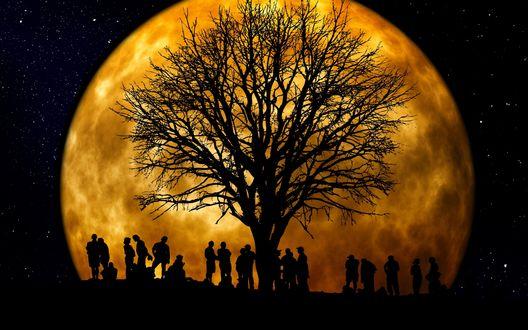 Обои Силуэты людей и дерева на фоне огромной желтой луны посреди черного ночного неба