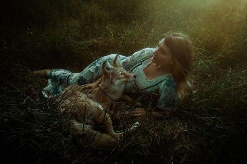 Обои Девушка с койотом лежат на траве, фотограф TJ Drysdale