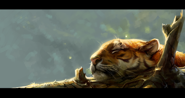 Обои Спящий тигр на ветке, by SalamanDra-S