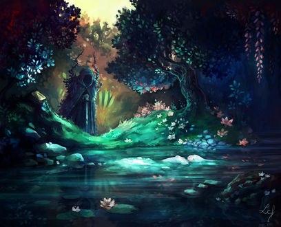 Обои Тихий пруд с лотосами, by Ludmila-Cera-Foce