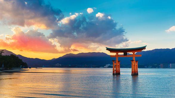 Обои Красные ворота Тории стоят в воде, Japan / Япония, автор Sean Pavone