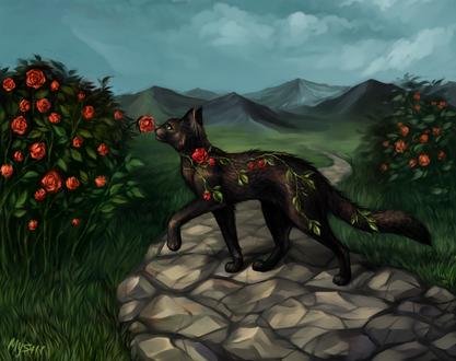 Обои Черная кошка с красными розами стоит на дорожке, by M-Y-S-T-l-C