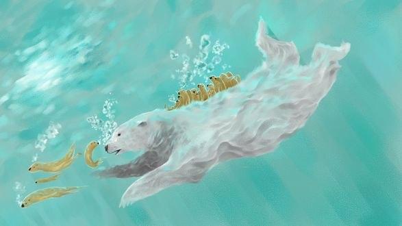 Обои Белый медведь с белыми тюленями под водой, by ChillingOtter