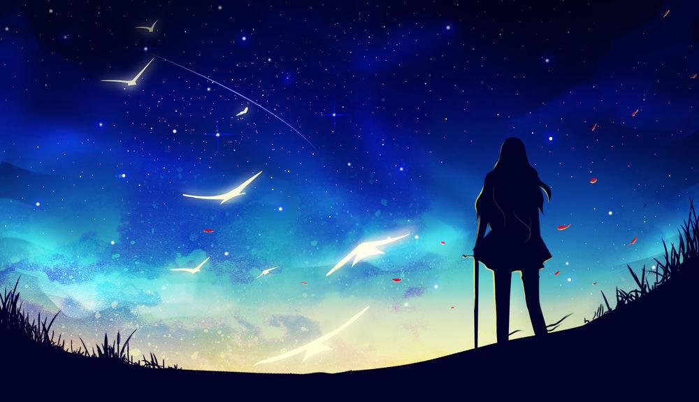 Обои для рабочего стола Силуэт девушки с мечом стоит на фоне ночного неба и белых птиц, by Erisiar