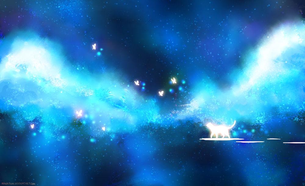 Обои для рабочего стола Светящаяся белая кошка идет на фоне голубых пушистых облаков среди ночного неба и бабочек, by Manatiini
