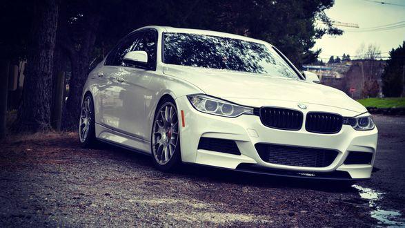 Обои Белый BMW m3 стоит на дороге в парке