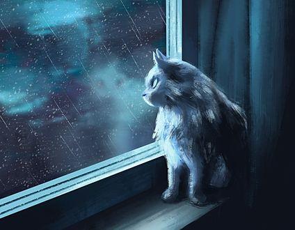 Обои Рисованный кот сидит у окна, за которым идет дождь