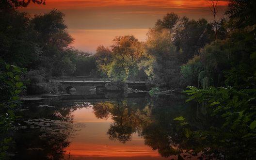 Обои Работа Мостик в осень, фотограф Roma Chitinskiy