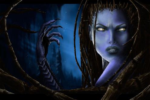 Обои Сара Луиза Керриган / Sarah Louise Kerrigan / Королева Клинков / Queen of Blades - героиня компьютерной игры StarCraft, автор Kennet Holivia