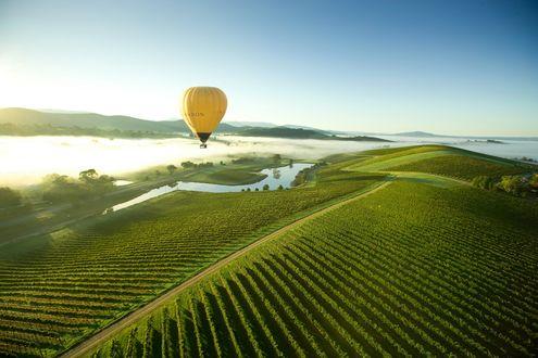 Обои Воздушный шар пролетает над полями