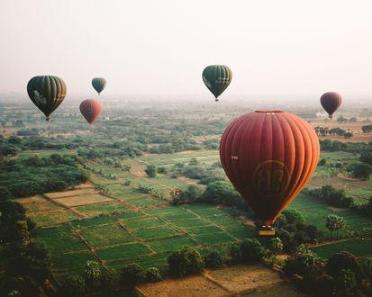 Обои Воздушные шары поднимаются в небо