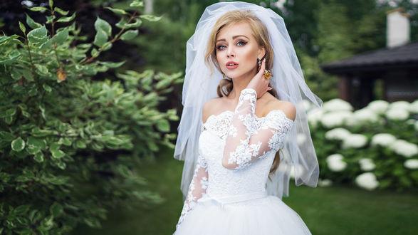 Обои Девушка в свадебном наряде стоит на фоне природы, фотограф Ivan Gorokhov