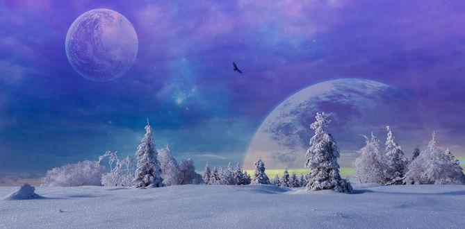Обои Планеты в небе над заснеженными деревьями, by AledJonesStockNArt