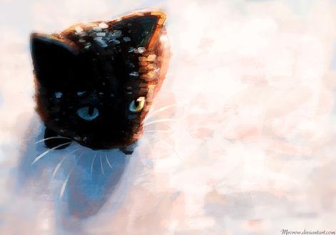 Обои Черный котенок в снегу, by Meorow