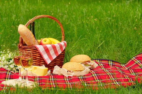 Обои На полянке на клетчатой ткани стоит корзинка с едой, лежит сыр, гамбургеры, два бокала с белым вином и букет ромашек, прощание с уходящим летом
